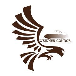 Google-logo-weidner-Condor